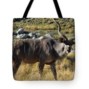 Greater Kudu Grazing Tote Bag