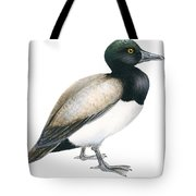 Greater Scaup Tote Bag by Anonymous