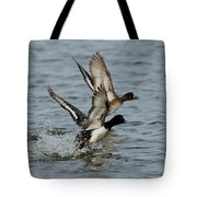 Greater Scaup Pair Tote Bag