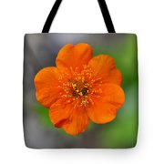 Grecian Rose Close 1 Tote Bag