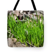 Green And Fresh Tote Bag