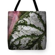 Green And Pink Caladiums Tote Bag