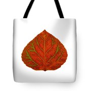Green And Red Aspen Leaf 3 Tote Bag