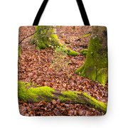 Green And Red Nature In The Forest Tote Bag