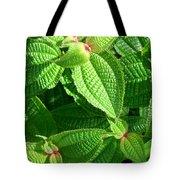 Green And Ruffled Tote Bag