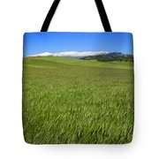 Green And Snow Tote Bag
