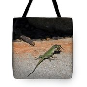 Green Anole Lizard Vs Wolf Spider  Tote Bag