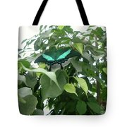 Green Banded Butterfly Tote Bag