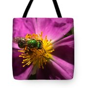Green Bee Feeding On Rock Rose Tote Bag