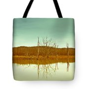 Green Bottom In Winter Tote Bag