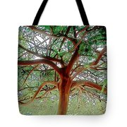Green Canopy Tote Bag by Terry Reynoldson