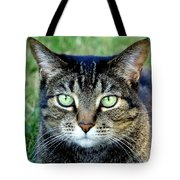 Green Cat Eyes In Summer Grass Tote Bag