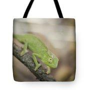 Green Chameleon Tote Bag