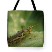 Green Closeup Grasshopper Tote Bag