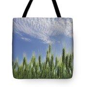 Green Crops Northwest Of Edmonton Tote Bag