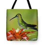 Green-crown Brilliant Female Tote Bag
