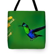 Green-crowned Woodnymph Tote Bag