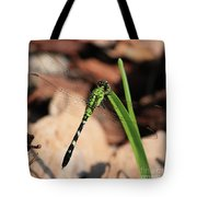 Green Dragonfly On Grass Square Tote Bag