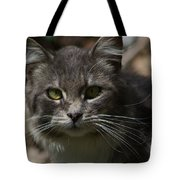 Green Eyed Kitty Cat Tote Bag