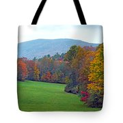 Green Field In The Fall Tote Bag