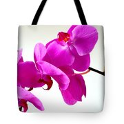 Green Field Sweetheart Orchid No 1 Tote Bag