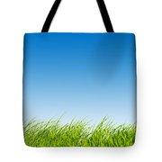 Green Fresh Grass On Blue Sky Panorama. Tote Bag