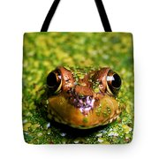 Green Frog Hiding Tote Bag
