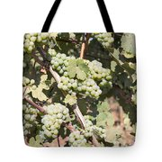 Green Grapes Growing On Grapevines Tote Bag