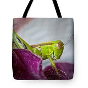 Green Grasshopper I Tote Bag