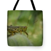 Green Grasshopper You Looking At Me Tote Bag