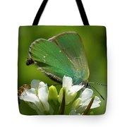 Green Hairstrek  Tote Bag