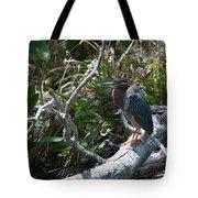 Green Heron 1 Tote Bag