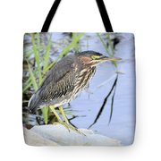 Green Heron 2 Tote Bag