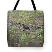 Green Heron Along Shore Tote Bag
