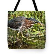 Green Heron And Catch Tote Bag
