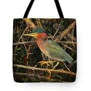 Green Heron Basking In Sunlight Tote Bag
