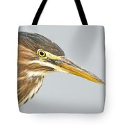 Green Heron Close-up Tote Bag
