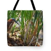 Green Heron Fishing Tote Bag by Kathleen Bishop