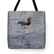 Green Heron In Swannanoa North Carolina Tote Bag