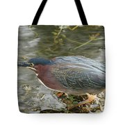 Green Heron On The Lookout Tote Bag
