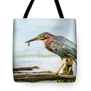 Green Heron Perfection Tote Bag