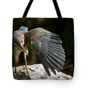Green Heron Pictures 382 Tote Bag