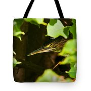 Green Heron Pictures 430 Tote Bag