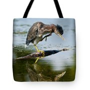 Green Heron Pictures 488 Tote Bag