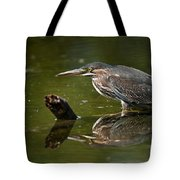 Green Heron Pictures 491 Tote Bag