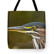 Green Heron Pictures 548 Tote Bag