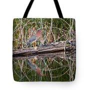 Green Heron Reflections Squared Tote Bag