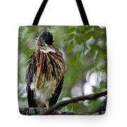 Green Heron Waves Hello Tote Bag