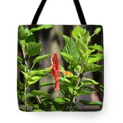 Green Hummingbird On Red Hibiscus Flower 2 Of 10 Tote Bag