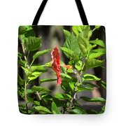 Green Hummingbird On Red Hibiscus Flower 5 Of 10 Tote Bag